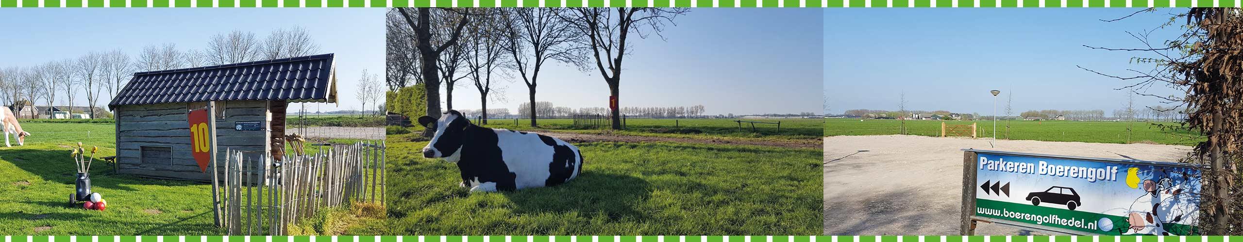 Slider 1 - Boerengolf Hedel - Activiteiten bij de boer